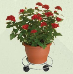 wagner plant trolleys